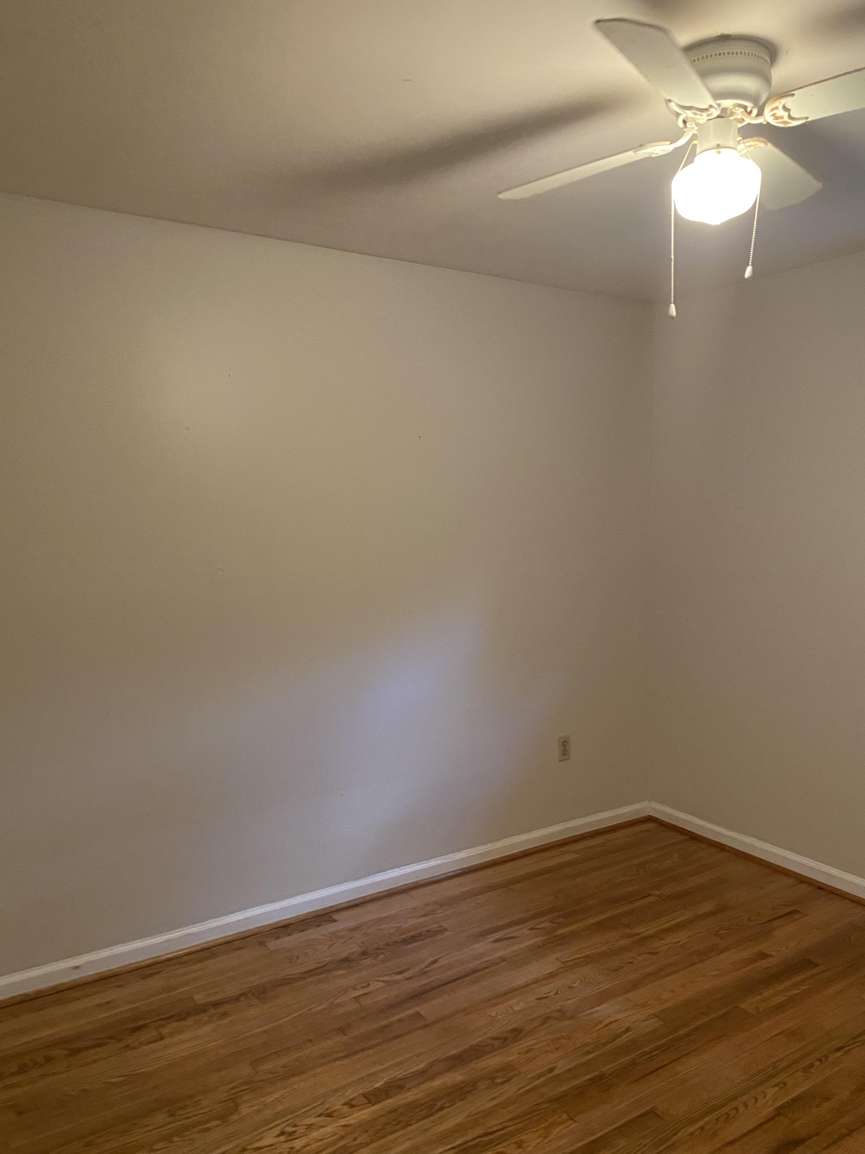 2411 Blossom Street, 2 Bedrooms Bedrooms, ,1 BathroomBathrooms,Apartment,For Rent,Blossom Street,1405